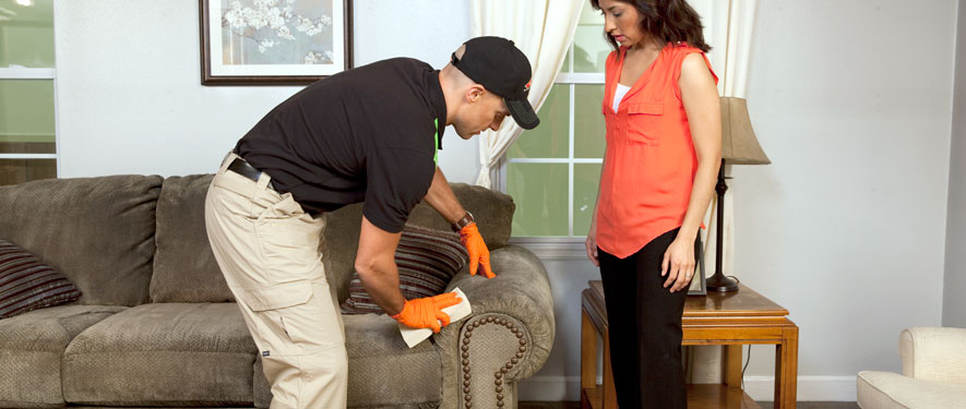 Blackfoot, ID carpet upholstery cleaning