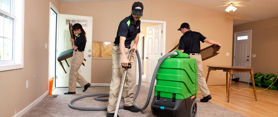 Blackfoot, ID cleaning services